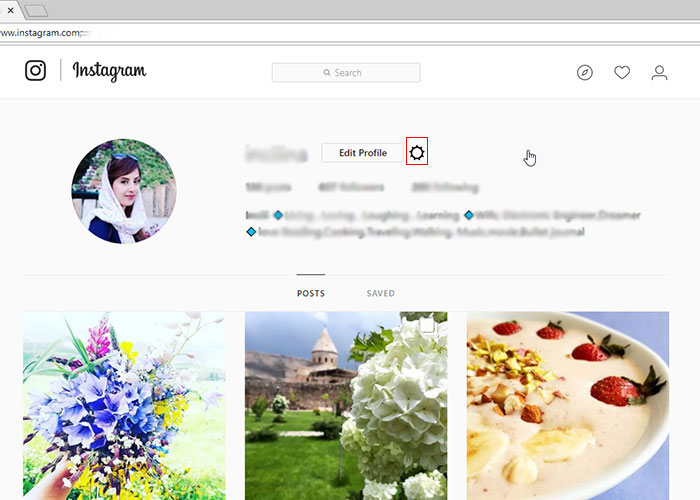 اینستاگرام( instagram)